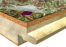 Organoid põrandakate