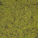 MOUS - Roheliseks värvitud sammal