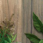 Legni Dark + Abet Wood